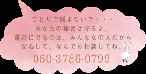 050-3786-0799